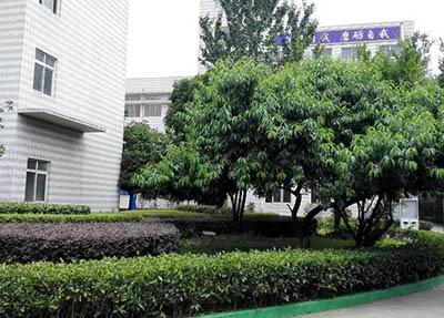重慶市第三衛生學校
