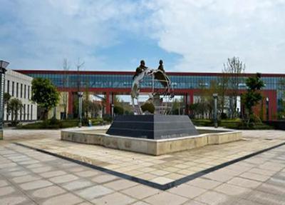 重慶南丁衛生職業學校